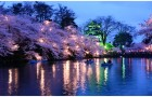 Japanes trip